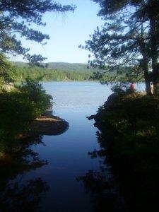 Bay Cliff Ives Lake
